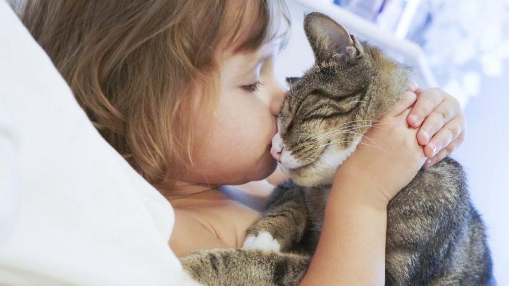 cat licking girls face